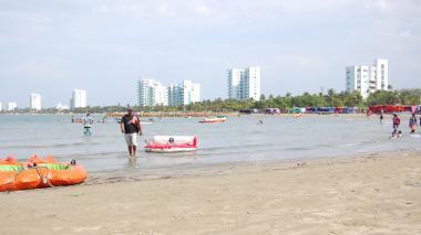 Cuarenta personas buscan capturar al caimán que ronda en el mar de Coveñas