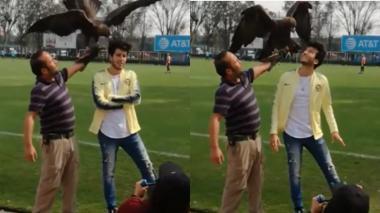 El susto de Sebastián Yatra en sesión de fotos con un águila