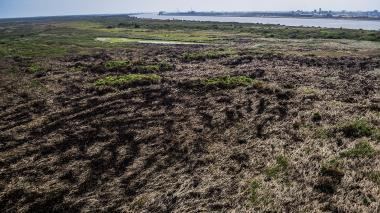 Así se veía desde el aire la zona que resultó quemada. En total fueron 5 hectáreas afectadas.