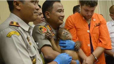 Andrei Zhestkov , detenido, junto al orangután que intentaba robar y varios de los agentes de aduanas de Indonesia.