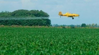 El glifosato, un herbicida polémico en todo el mundo