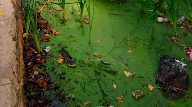 La lluvia arrastró la basura hasta el mar: comunidad de Puerto