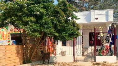 Reportan caso de maltrato animal en el barrio Los Olivos
