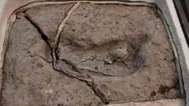 La huella de un Hominipes Modernus fue ubicada por científicos en el periodo Pleistoceno tardío.