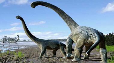 Reconstrucción digital de dinosaurios saurópodos.