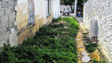 Confirman que menores en Puerto murieron por mal de Chagas