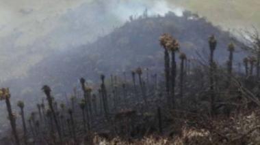 Procuraduría insta a Gobierno proteger parques naturales del país