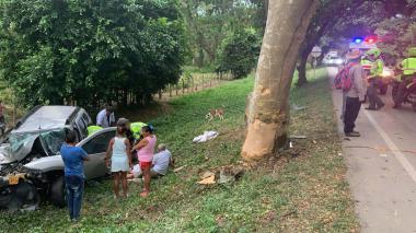 Cuatro muertos y tres heridos deja accidente en la Loma del Bálsamo, Magdalena