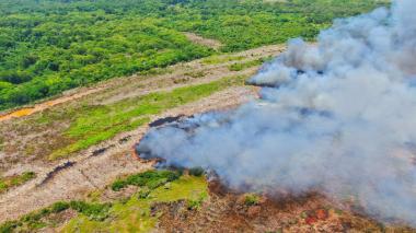 Una columna de humo se observa en el foco del incendio.
