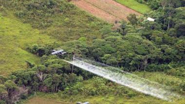 Sierra Nevada, el primer rincón de Colombia que vio caer glifosato