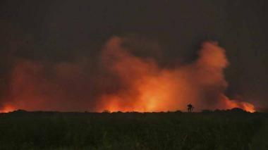 Las quemas en la Isla Salamanca han generado picos de polución que han superado la media de la ciudad.