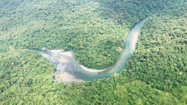 Accidente de avioneta en Amazonía de Ecuador deja cuatro muertos