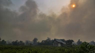 Cierran aeropuertos y colegios de Malasia e Indonesia por humo de incendios