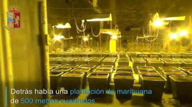 En video   Una plantación de marihuana en Italia escondida detrás de una ducha