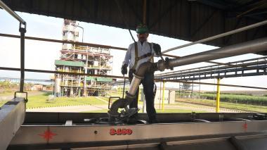 Trabajador de la agroindustria del etanol en Colombia opera maquinaria.