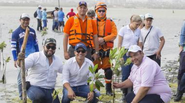 Las autoridades ambientales durante la siembra de mangles en inmediaciones de la ciénaga de Mallorquín.