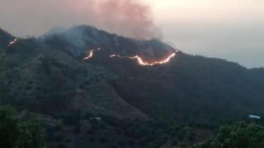 Incendio en Sierra Nevada arrasa con 200 hectáreas de bosque seco