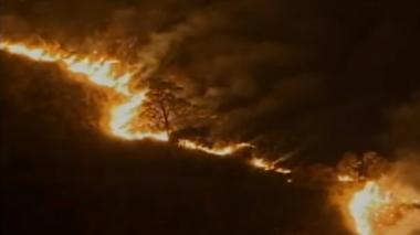 En video | Por voraz incendio forestal en Quetame, Cundinamarca, declaran calamidad pública
