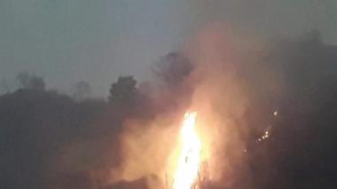 Incendio en Sierra Nevada consume 300 hectáreas de vegetación