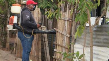La fumigación contra el mosquito Aedes es clave.