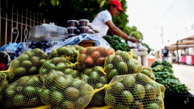 Campeche cancela el Festival de la Ciruela por Covid-19