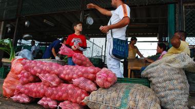 En las diferentes plazas de mercado del país hubo disminución en los precios de las verduras.