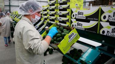 Gobierno Nacional anuncia alivios económicos para empresas pequeñas