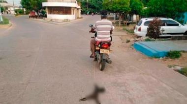 La imagen de un hombre en una motocicleta arrastrando el cuerpo de un gato circula en redes sociales.