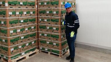 Alan Navarro ahora es un creativo exportador de ñame y limón