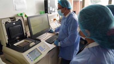 Los laboratorios habilitados por el Ministerio de Salud vienen procesando las muestras de COVID-19.