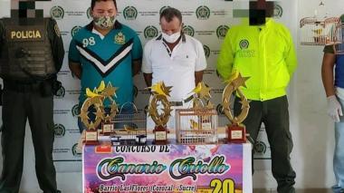 Sorprenden a funcionario de Corozal realizando concurso de canarios