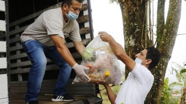 UE dona a Colombia 1,5 millones de euros para atención de COVID-19