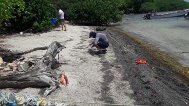 El Caribe tiene su Centro de Investigaciones Marinas y Limnológicas