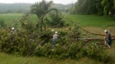 Vientos causan daños en varios municipios de Córdoba