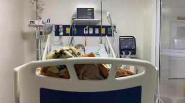 Alerta roja en red de hospitales de La Guajira por coronavirus