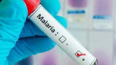 Colombianos ganan premio de innovación con software para detectar malaria