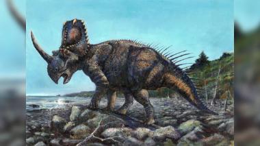 Detectan por primera vez cáncer de hueso en un dinosaurio