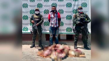 Capturan a un hombre con tres tortugas descuartizadas en Maicao
