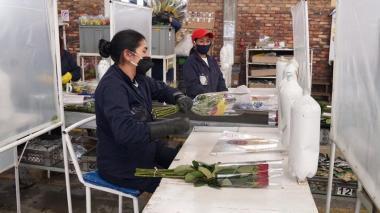Auxilio económico para pequeñas y medianas empresas irá hasta diciembre