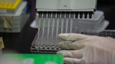 Argentina y México producirán vacuna AstraZeneca y Oxford para América Latina