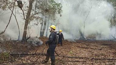 Cuerpo de Bomberos de Sitionuevo durante las labores para controlar y liquidar el último incendio que se presentó en el parque isla Salamanca.