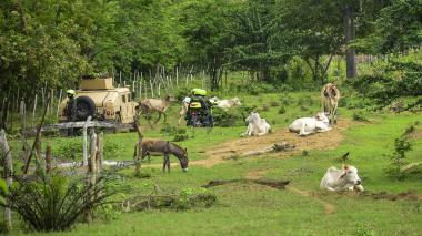 Los patrullajes conjuntos entre la Policía y la Armada en las diferentes veredas les dan confianza a los campesinos.