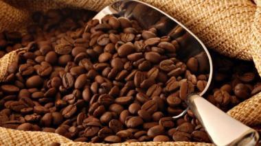 Producción de café en Colombia bajó un 3% en agosto