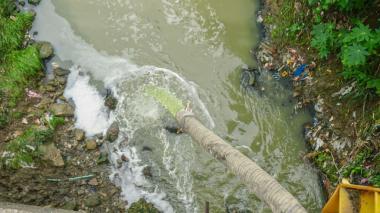 Con microalgas buscan descontaminar el Arroyo Grande de Corozal