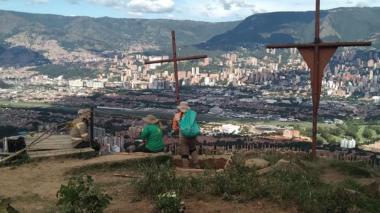 Fiscalía inició investigación por muerte masiva de gatos en Medellín