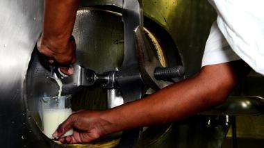 Ganaderos plantean subsidio a la leche para estratos 1 y 2