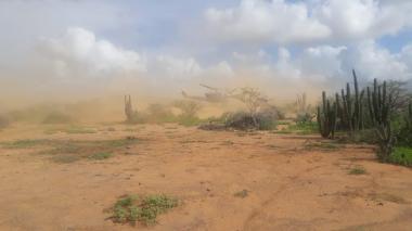 Destruyen dos pistas ilegales en la Alta Guajira