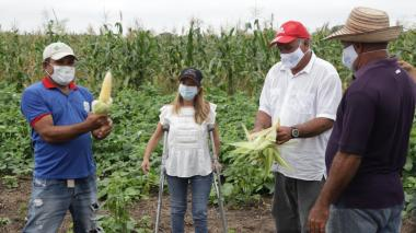 116 agricultores de Manatí se benefician del programa 'Semillas de vida'