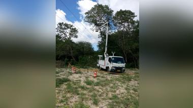 Podas técnicas mejoran el servicio de energía: Air-e