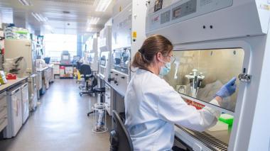 Vacuna de Oxford y AstraZeneca tiene una efectividad del 70,4%